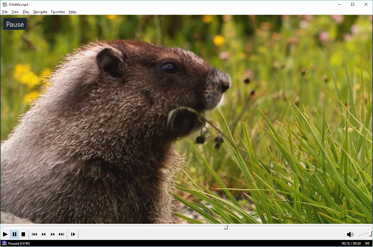 Click to media player HD classic home cinema