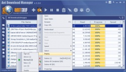 Ant Download Manager screenshot