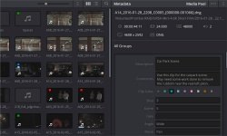 DaVinci Resolve screenshot 3