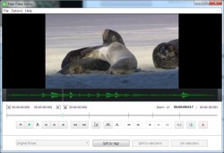 Free Video Editor screenshot